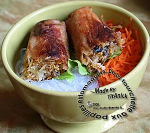 Nems au porc et aux carottes vietnam les papilles Nems vietnamiens