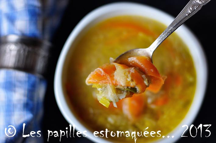 Soupe legumes racines en vermicelles 01 logo