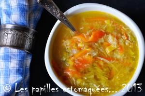 Soupe legumes racines en vermicelles 03 logo