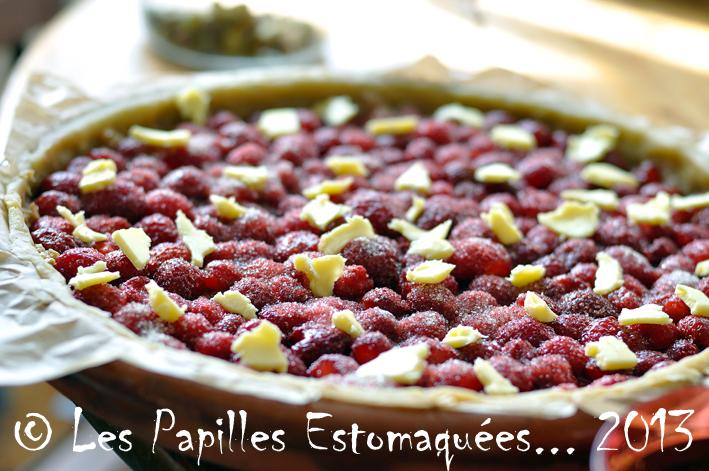 Tarte rhubarbe fraise crumble pistache menthe graines courge 03