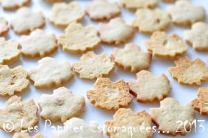 Biscuits erable 09