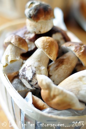 Cepes de Bordeaux 01