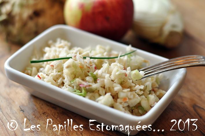 Salade fenouil celeri pomme citron 02