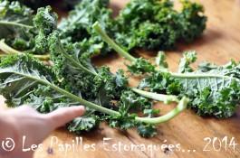 Chou vert frise kale preparation 03