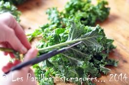 Chou vert frise kale preparation 04