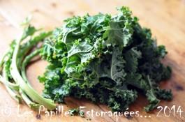 Chou vert frise kale preparation 06
