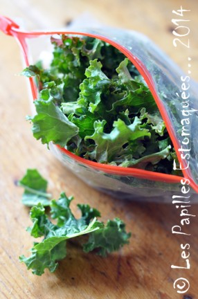 Chou vert frise kale preparation 08