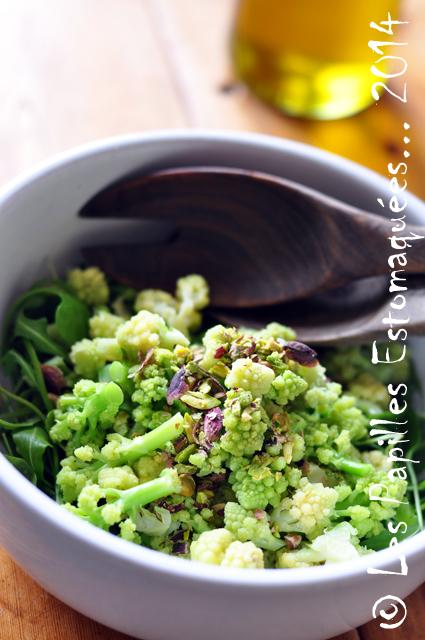 Salade chou romanesco mache pourpier roquette graines germees 02