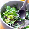 Salade chou romanesco mache pourpier roquette graines germees 03