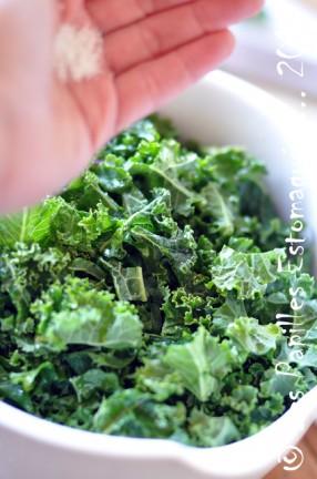 Chips chou kale frise vert 03