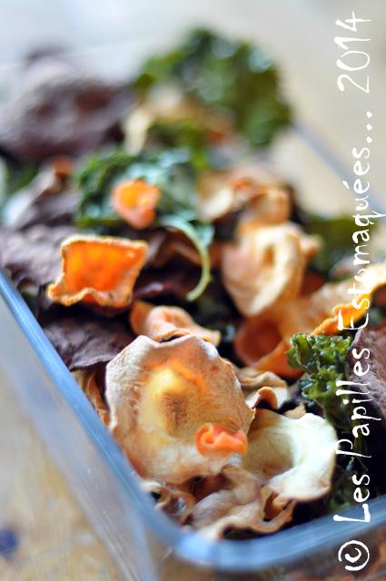 Chips de legumes 01 Les Papilles Estomaquees