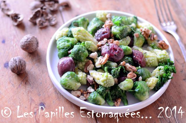 Salade aux choux romanesco kale brocoli et Bruxelles aux gesiers de canard et noix