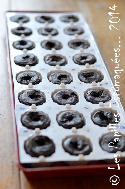 Semis poivrons et piments 01
