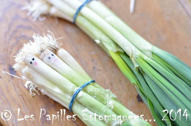 atelier legumes expressifs 07