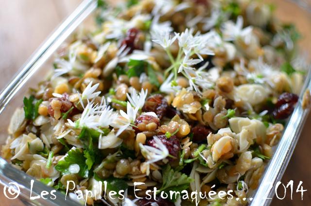 Salade lentilles canneberges ail des ours amande citron 01