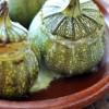 Courgettes rondes farcies quinoa pignons chevre ciboulette 01